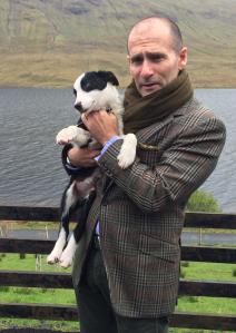 Gavin sheepdog Ireland April 2014